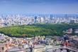 Tokyo, Japan - cityscape with Yoyogi park