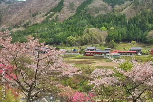 Japan countryside - Gifu prefecture