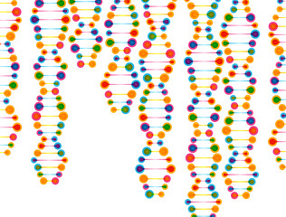 beautiful structure of the DNA molecule