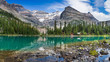Lake O`Hara Panorama