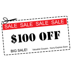 One Hundred Dollars Off Sale Coupon