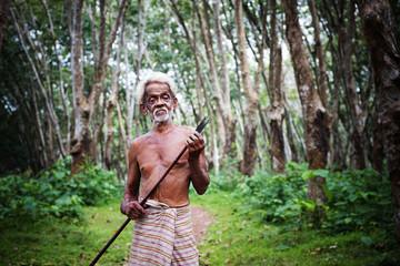 Rubber Plantation Worker