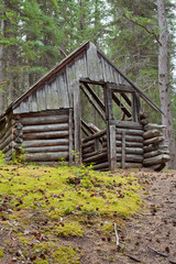 Rotting old traditional Yukon taiga log cabin ruin