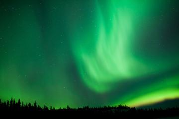 Aurora borealis substorm swirls over boreal forest