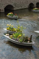 Frühlingsbepflanzung in Erfurt