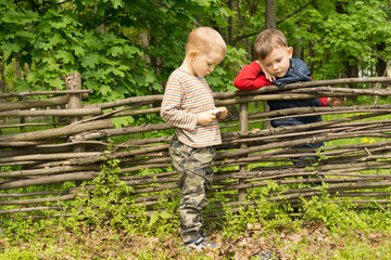 Two little boys having a discussion over a fence