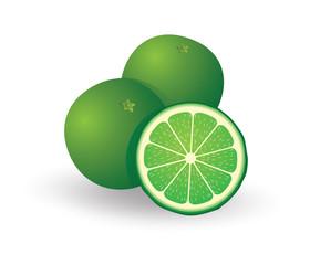 Green Lemon - Illustration
