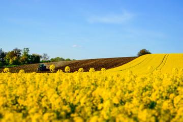 Bodenbearbeitung, Rapsfeld, Unschärfeeffekt
