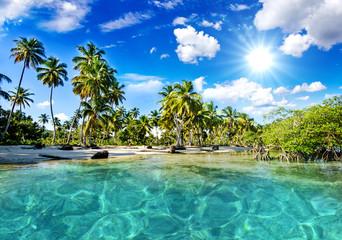 Lonely Caribbean beach :)