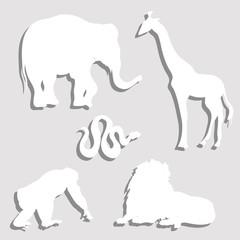 Paper Wild Animals Set