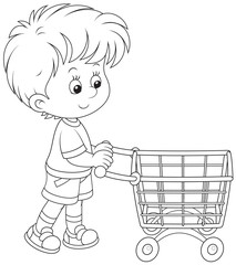 Boy with a shopping trolley