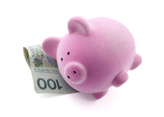 Piggy bank sleeping on polish banknotes. Clipping path included.