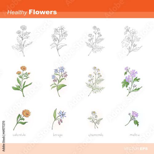 Healthy flowers
