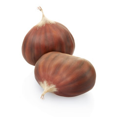 Chestnuts isolated on white, clipping path