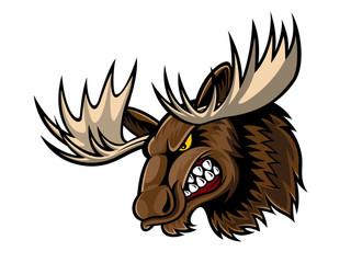 Angry Moose Head