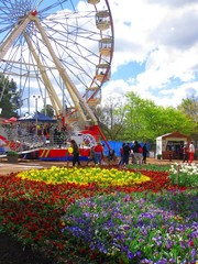 Flower garden and ferris wheel in Australia