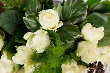 sfondo di rose bianche