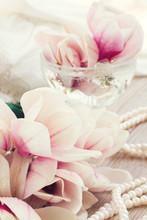 fleurs de magnolia avec des perles