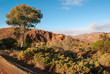 Landscape in the Australian outback