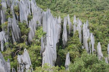 Pinnacles - Borneo