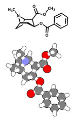 Cocaine stimulant drug molecule. Used as salt or as free base.