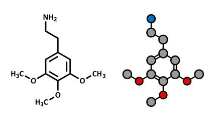 Mescaline psychedelic drug molecule. Present in peyote cactus.