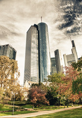 Modern buildings and skyline of Frankfurt from a beautiful park