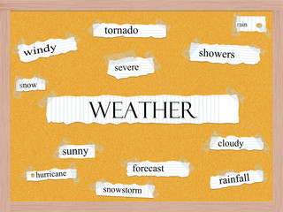 Weather Corkboard Word Concept