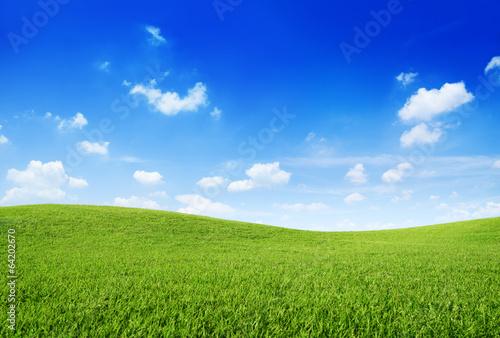 Hill Scene - 64202670