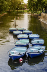Ten Rowing Boats On Peaceful Canal