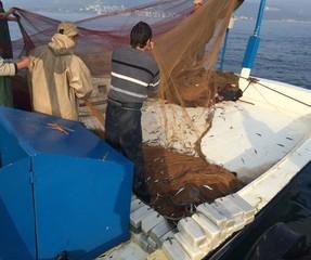 Balıkçı Motoru