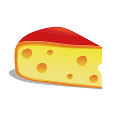 Slice of Edam Cheese