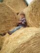 Junge auf Strohballen