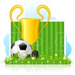Soccer Ball with Trophy on Green Grass
