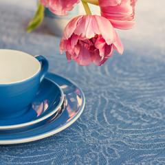 Tulpe mit Tasse