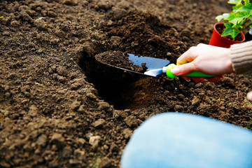 Woman working on ground with tool