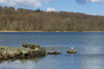 Flensburg Wassersleben
