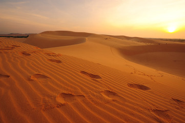 Deserts Landscape