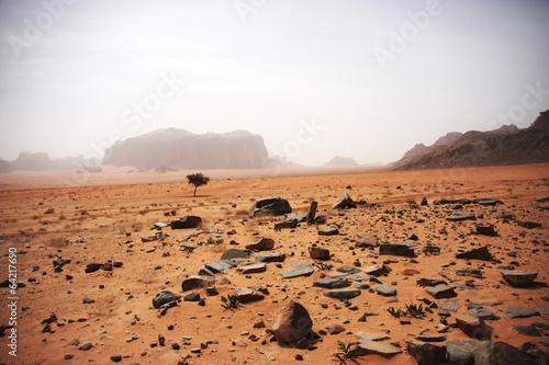Spoed canvasdoek 2cm dik Midden Oosten Desert landscape