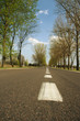 Country road in Europe at summer/spring time