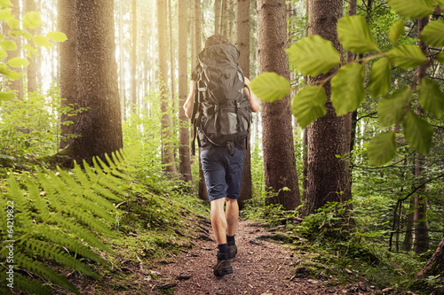 canvas print picture Hiking
