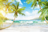 Tropical island with palm trees - 64220646