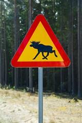 Moose roadsign