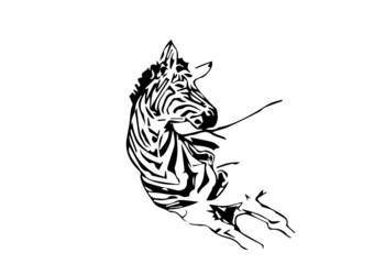 zebra tridimensionale