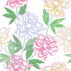 White Seamless pattern  with peonies
