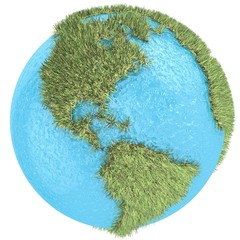 Globe of grass and water