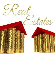Real estates, houses made ??of coins