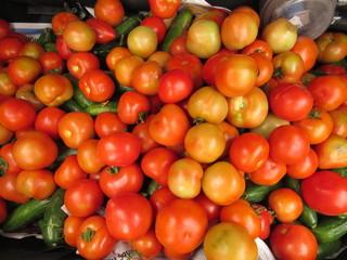 organik yiyecek