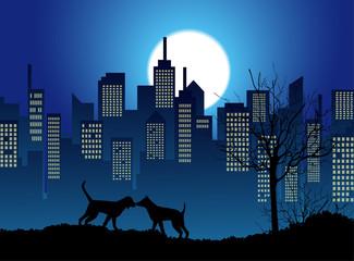 coppia di cani sotto la luna piena