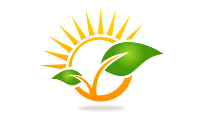 leaf and sun logo